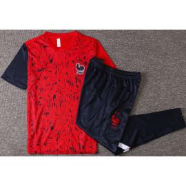 Camiseta de Entrenamiento Francia 2020/2021 Rojo Royado